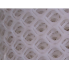 Oyster Breed Plastic Mesh