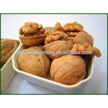 Venda quente alibaba manufactory kernel de noz natural de qualidade superior