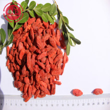 Superfood Protect Eyesight 저농약 Goji 딸기