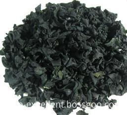 Organic Chlorella Spirulina Powder in Bulk