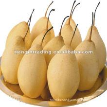 10kg ya pear