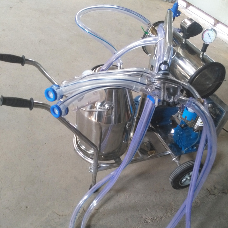 milking machine for goat
