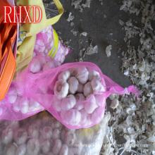 fresh quality garlic