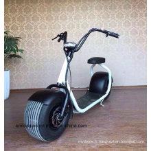 Vélos électriques Citycoco 800W Brushless 60V
