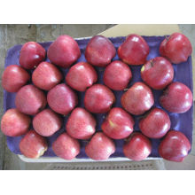 Dealer huniu apple fresh fruit in factory price