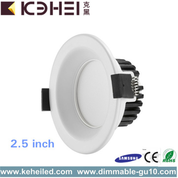 5W of 9W 2,5 inch LED-downlights niet dimbaar