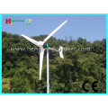 2000W horizontal-axis Wind turbine (maintenance-free)