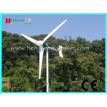 2000W horizontaler Achse Windkraftanlage (wartungsfrei)