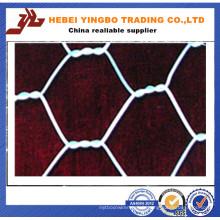 Grille métallique hexagonale galvanisée à chaud (YB_53012)