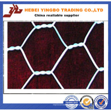 Hot Dipped Galvanized Hexagonal Wire Mesh (YB_53012)