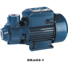 Micro Vortex Pump (DKm60-1)