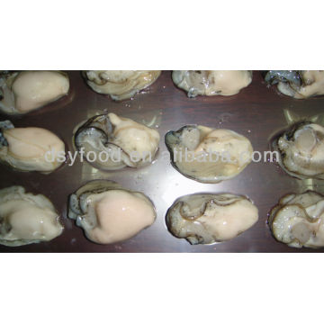 Gefrorene Pacific Oyster