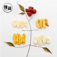 Embalaje al vacío a granel mezcla frutas chips alimentos liofilizados