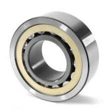 Cylindrical Roller Bearing (N203)