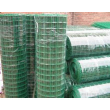 Low Carbon Steel Holland Wire Mesh mit Fabrik