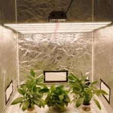 Spyder Led Grow Light 640W para Plantas Médicas