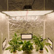 Spyder Led Grow Light 640W pour plantes médicales