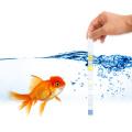 Kit de test d'aquarium Kit de test d'eau d'aquarium