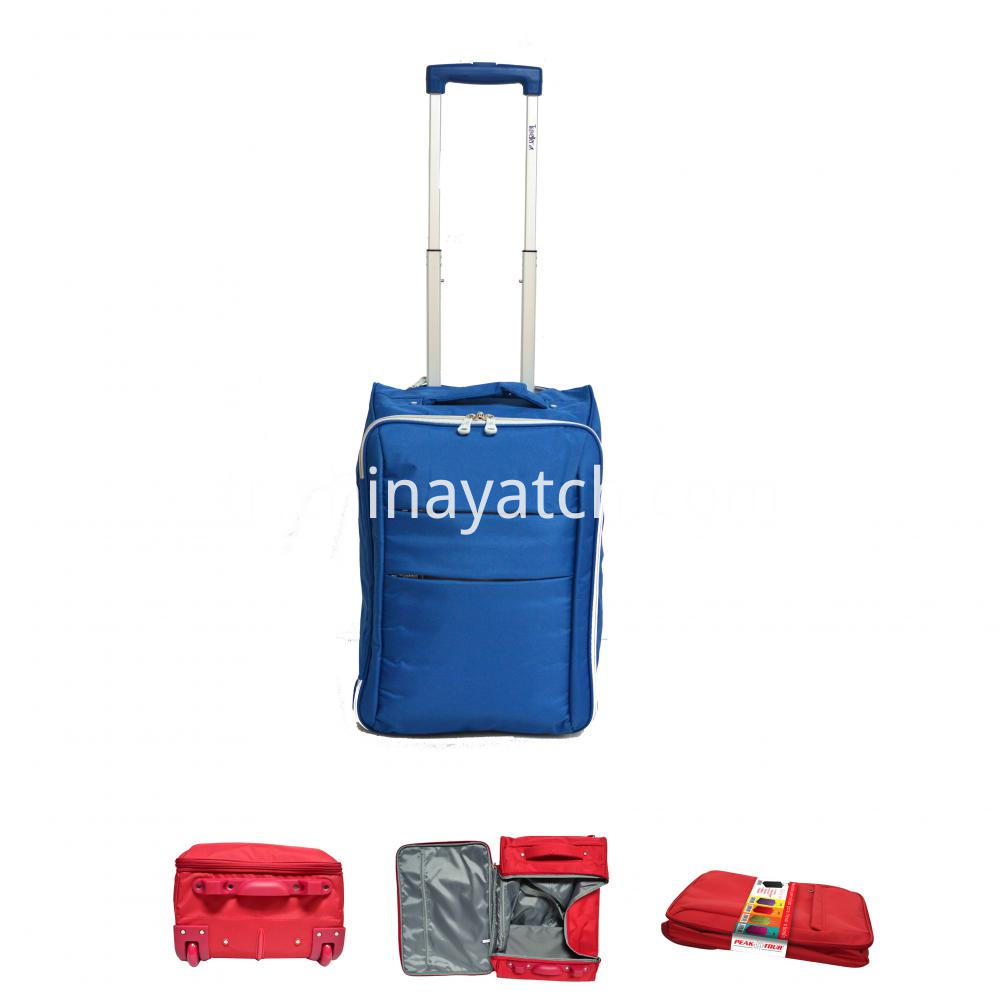 Wheeled Collapsible Bag
