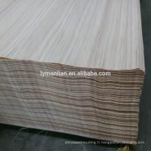 porte en placage design / plaqué bois teck reconstitué / arbre eucalyptus