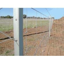 Clôture de champs à nœud articulé à charnière (XM-FF4)
