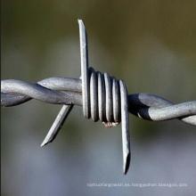 Seguridad de alambre de púas galvanizado para valla