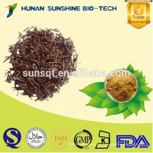 100% de extracto natural de gambir de uncaria en polvo / extracto de garra de gato / alcaloides