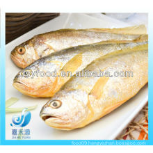 FROZEN SMALL YELLOW CROAKER FISH(SEAFOOD)