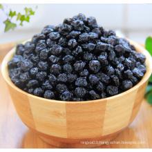 bulk dried blueberry