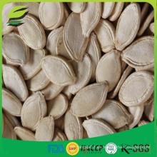 Orgánico shineskin calabaza semillas fabricante