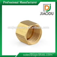 Zhejiang fabricante alta qualidade forjada cor de latão amarelo personalizado npt fêmea rosqueado tampa de tubo de latão igual para água