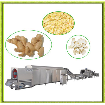 Full Automatic Industrial Fruit Drying Machine
