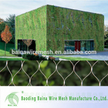 Red de malla de alambre de acero inoxidable para la escalada de pared de planta verde