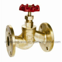 Brass Flange Globe Valve Manufacturer (J314)