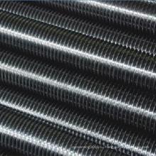 Нержавеющая сталь Резьбовой стержень / резьбовые шпильки DIN975 / Резьбовой шток Fcatory