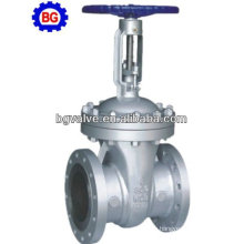 API609 Stainless Steel Gate Valve