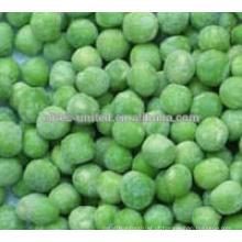 Especificações de ervilhas verdes