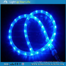 LED Rope Light for Christmas