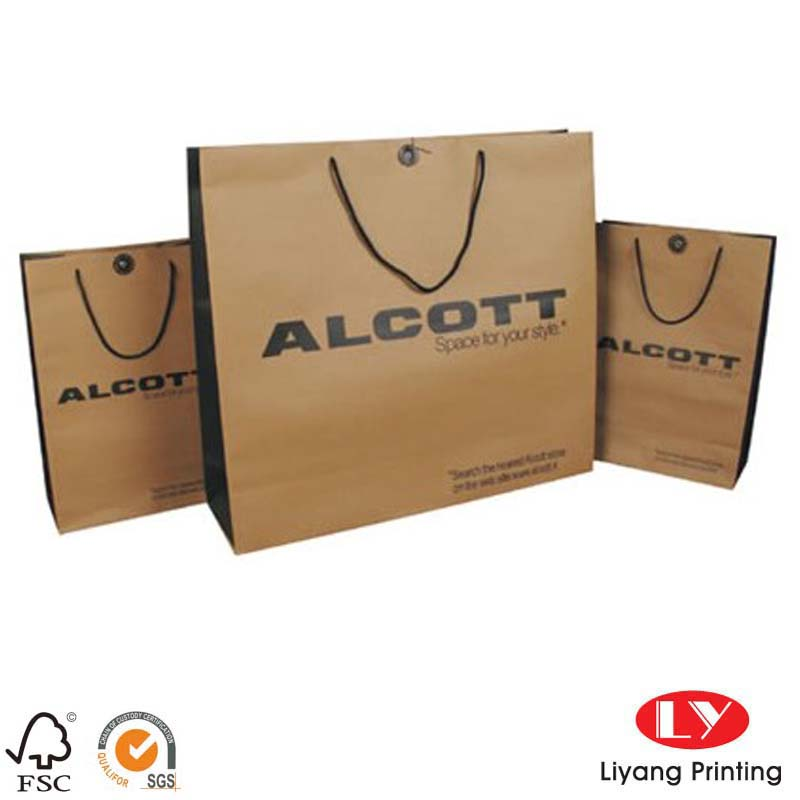 Twist kraft paper bag 032210