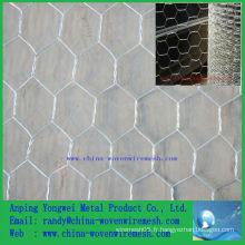 Vente chaude Une grille métallique hexagonale de ping / fil de poulet décoratif (alibaba china)