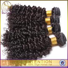 Compagnie maritime d'échantillon gratuit Clip bouclés crépus en Extensions de cheveux