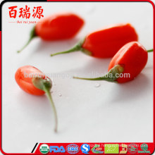 2016 harvest ningxia dried goji berry of all dried fruit