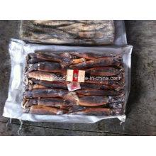 La meilleure qualité Illex Argentinus Frozen Illex Squid