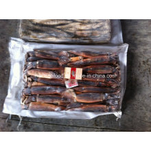 Best Quality Illex Argentinus Frozen Illex Squid