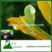 100% Pure natural Magnolia Leaf Essential Oil