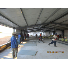 Automatic Chicken Equipment and Prefabricated Poultry Shed Contruction and Installation