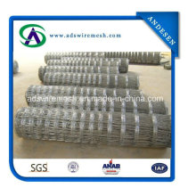 Hot Dipped Galvanized Farm Fencing Field Fence