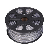 4.8W / M Decorativas 5050 RGB LED flexível Strip Light 220V