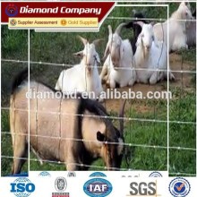 ISO, BV, SGS Certificated Cattle Fence