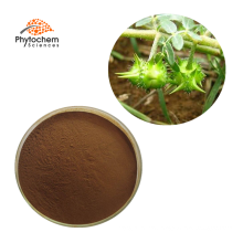 bulk 90% saponins 40% protodioscin tribulus terrestris p.e. extract powder tribulus terrestris